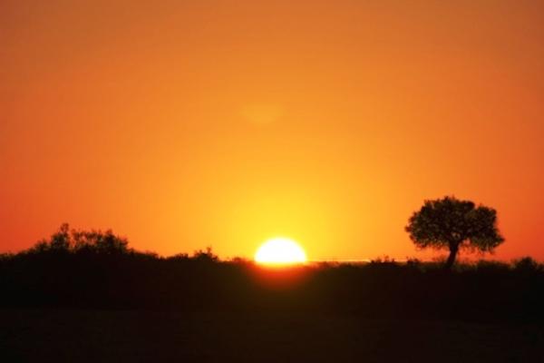 ケニアの夕日