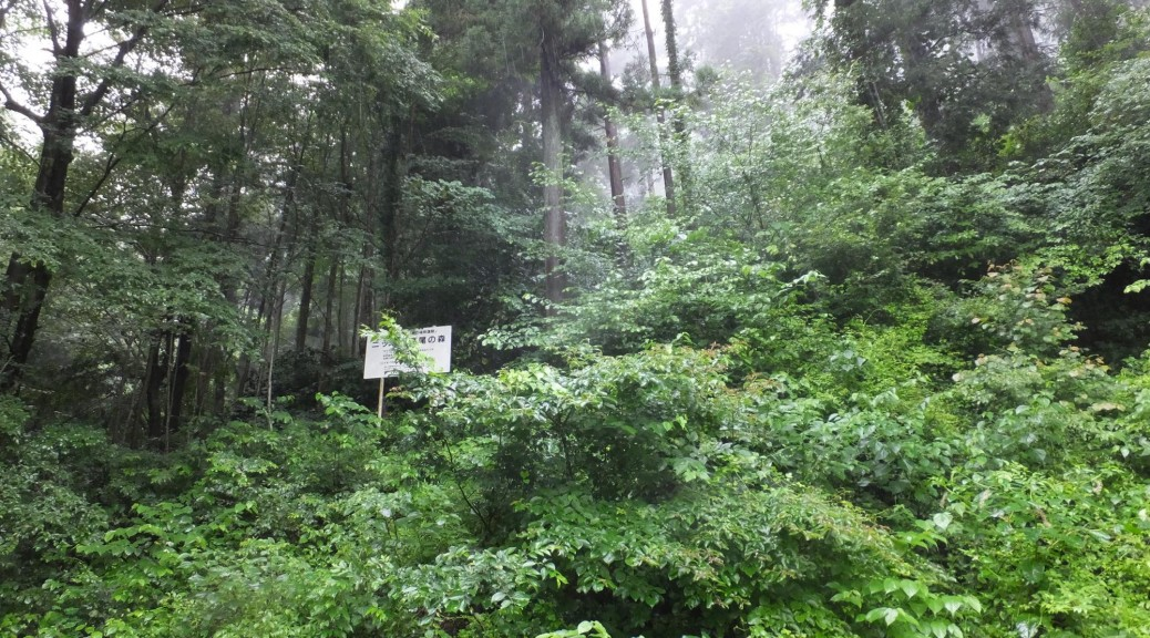 s2000_ニッセイ高尾の森入口