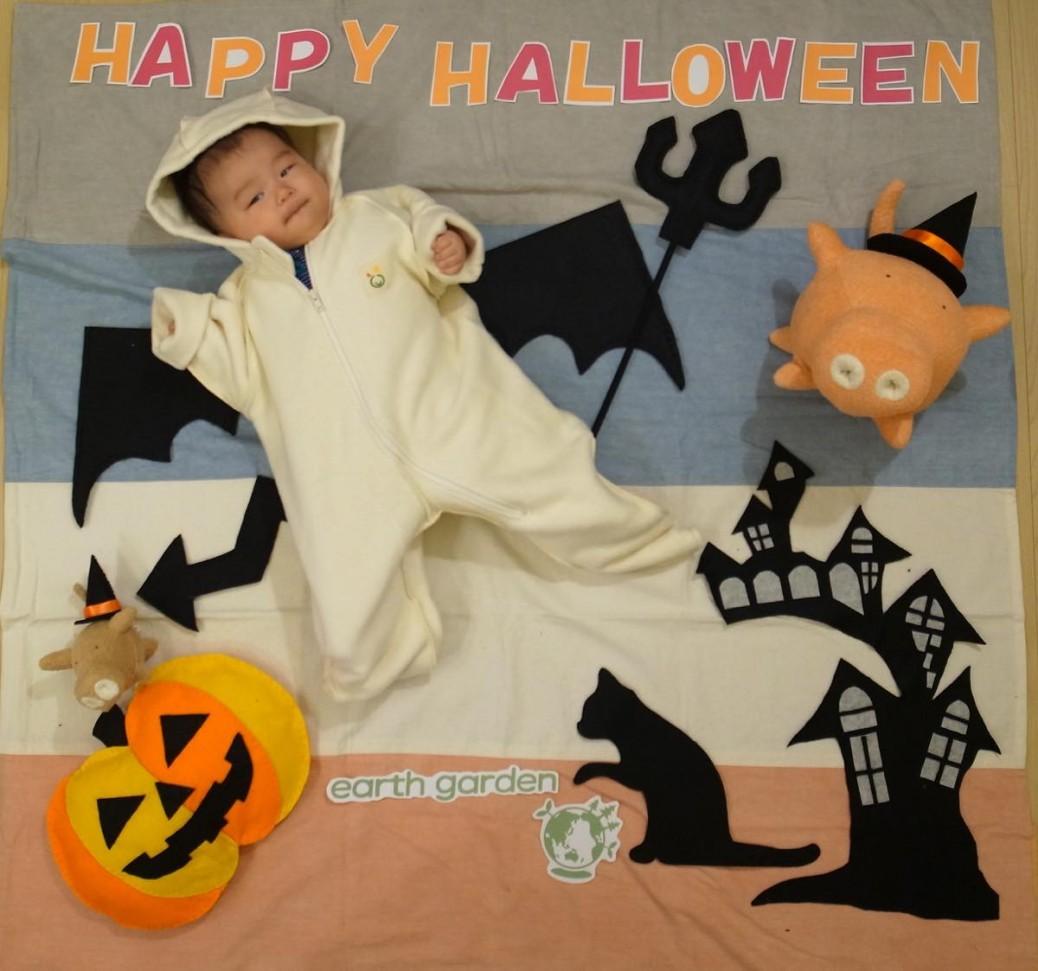 ・赤ちゃんをポイントに寝かせて、上から撮影してください。 小物はいろいろあるので、好みで配置してください。