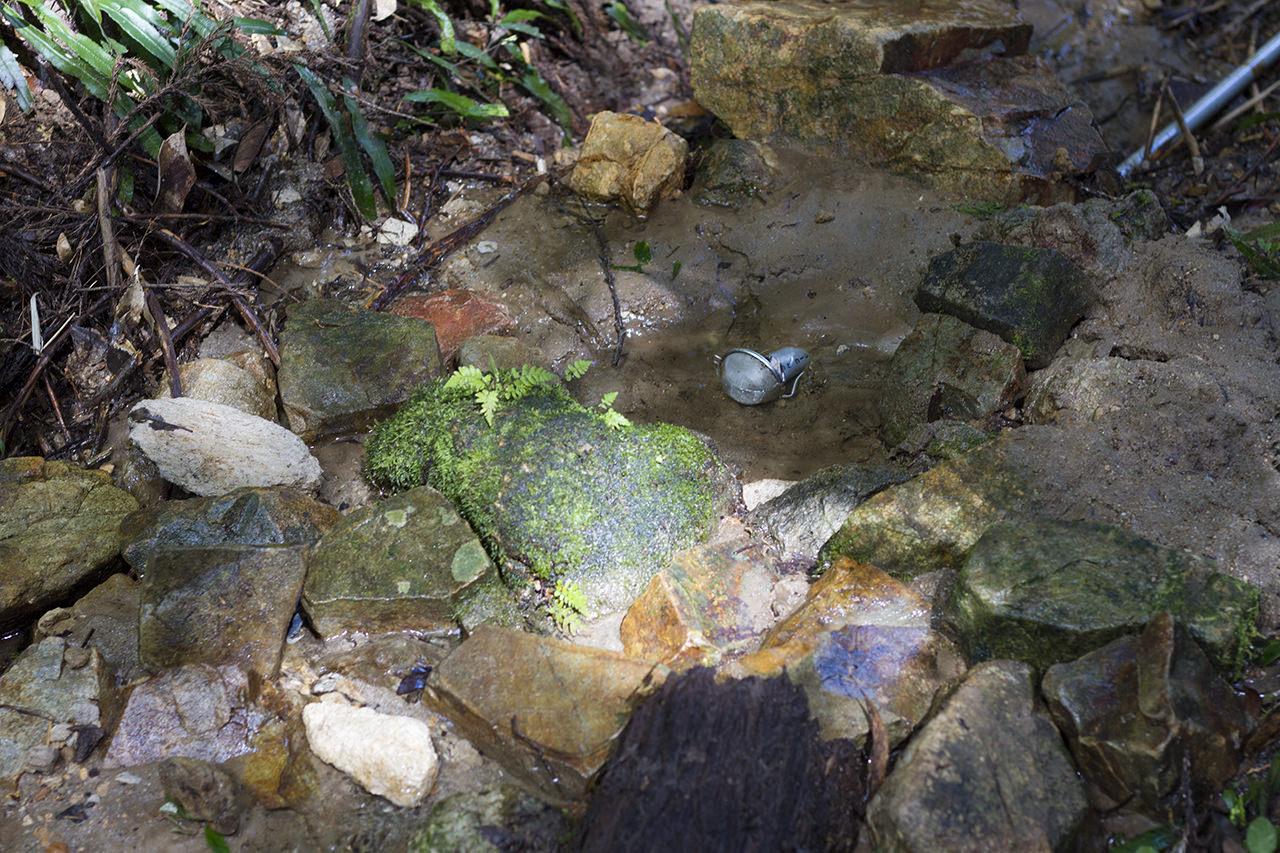 水をめぐる冒険