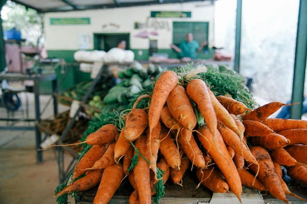 キューバの無農薬無化学肥料の野菜