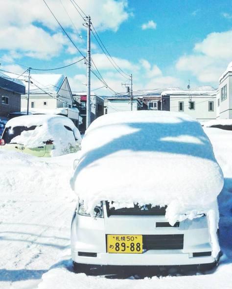 冬場に札幌を離れていると、帰ってきたときにちょっと大変(笑)
